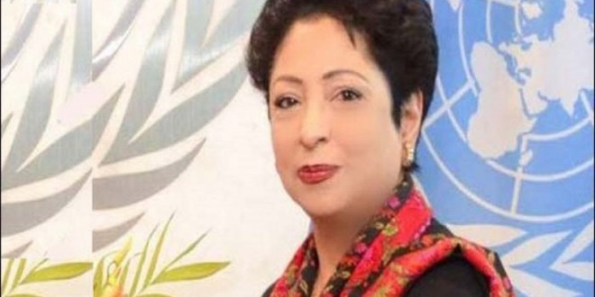 Maleeha Lodhi elected as vice president of UN's economic arm