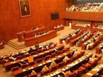 326 CASES OF VIOLENCE AGAINST WOMEN REPORTED IN LAST SEVEN YEARS: SENATE TOLD